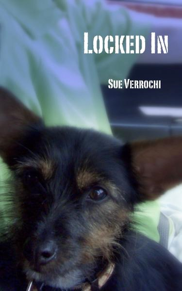 Locked In By: Sue Verrochi