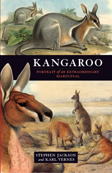 Kangaroo: A Portrait Of An Extraordinary Marsupial By: Stephen Jackson and Karl Vernes