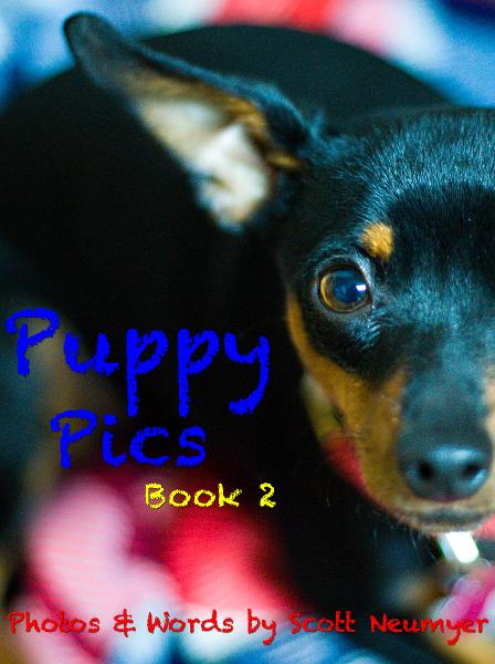 Puppy Pics: Book 2 By: Scott Neumyer