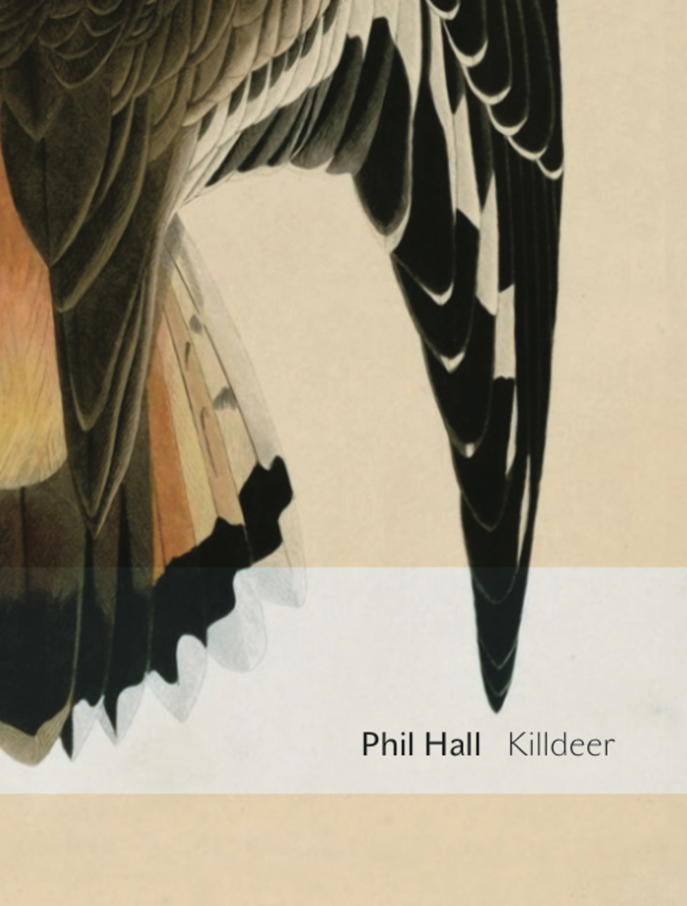 Killdeer: essay poems By: Phil Hall