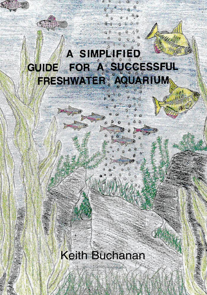 A Simplified Guide For A Successful Freshwater Aquarium