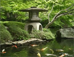 A Beginners Guide to Japanese Gardens
