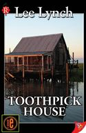 download Toothpick House book