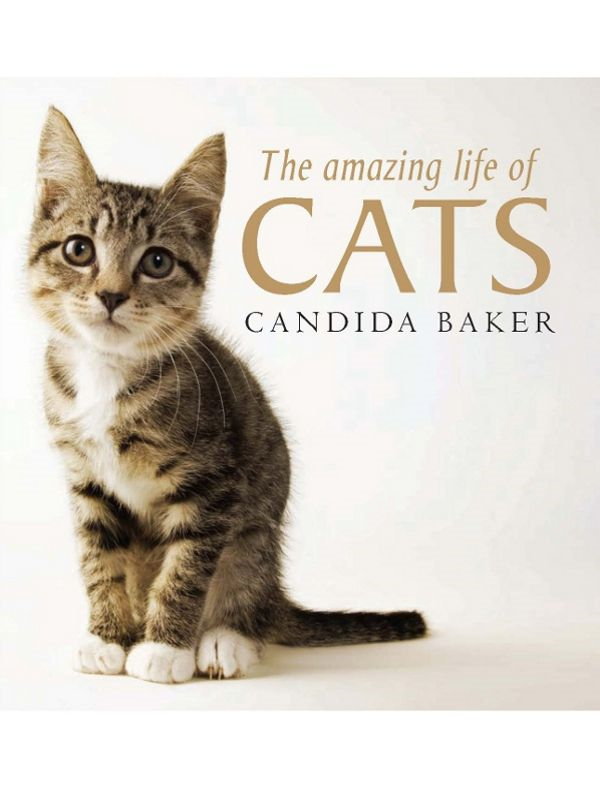 The Amazing Life of Cats By: Candida Baker