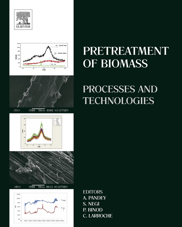 Pretreatment of Biomass Processes and Technologies