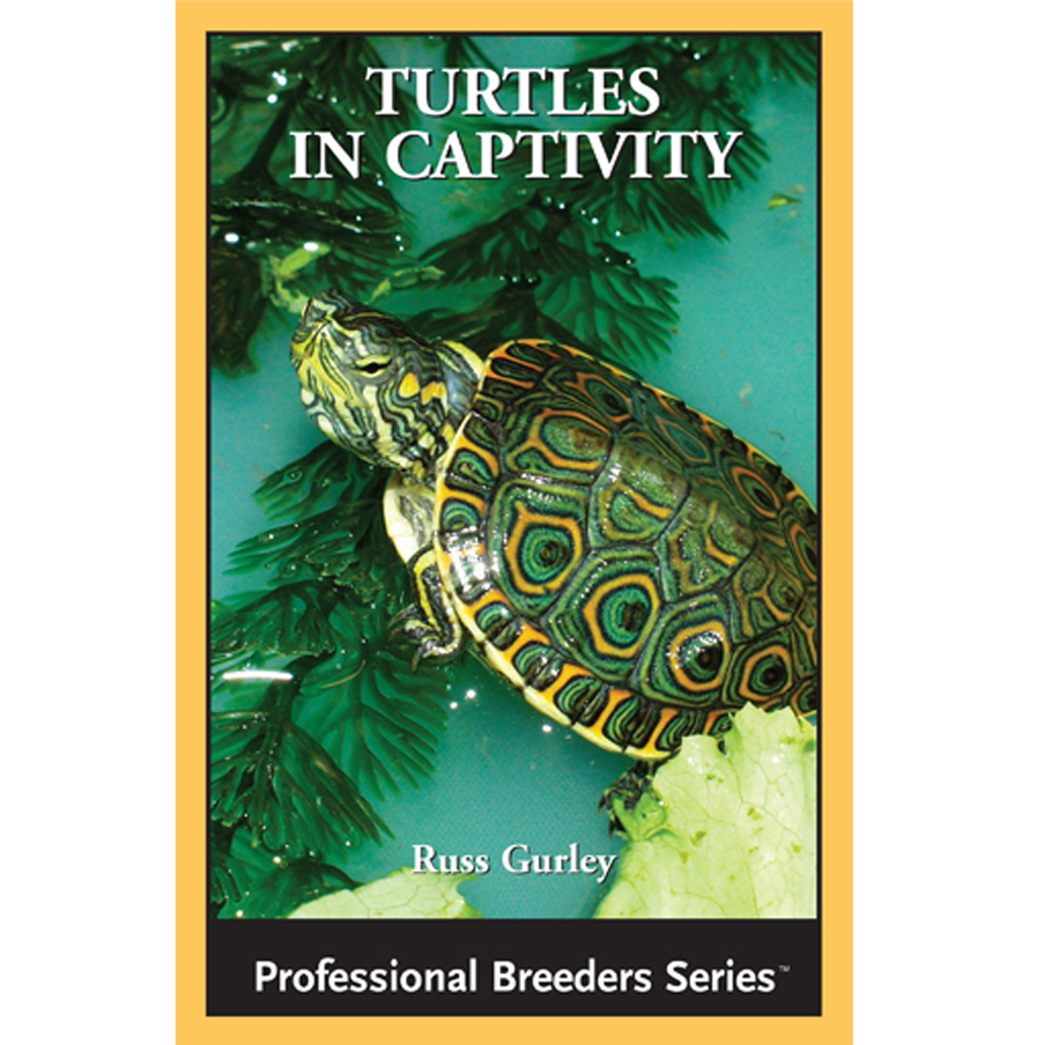 Turtles in Captivity