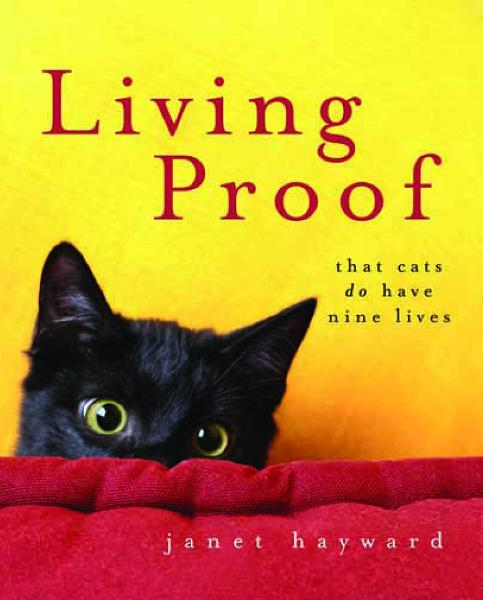 Living Proof: That cats do have nine lives By: Janet Hayward