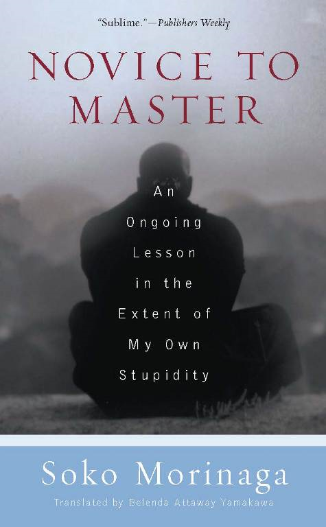 Novice to Master By: Soko Morinaga