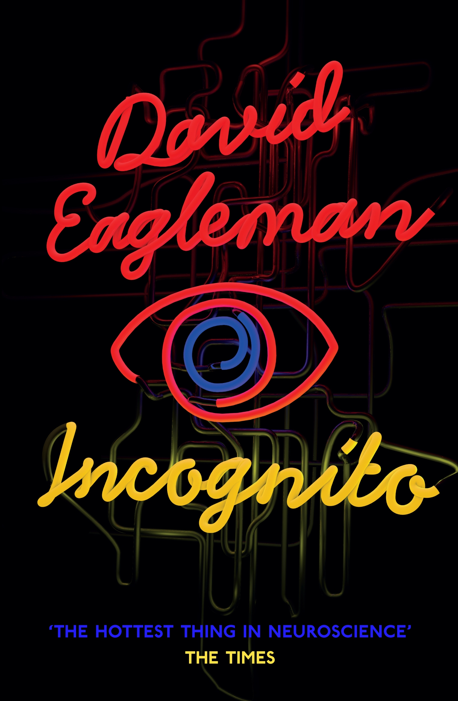 Incognito: The Secret Lives of The Brain The Secret Lives of The Brain