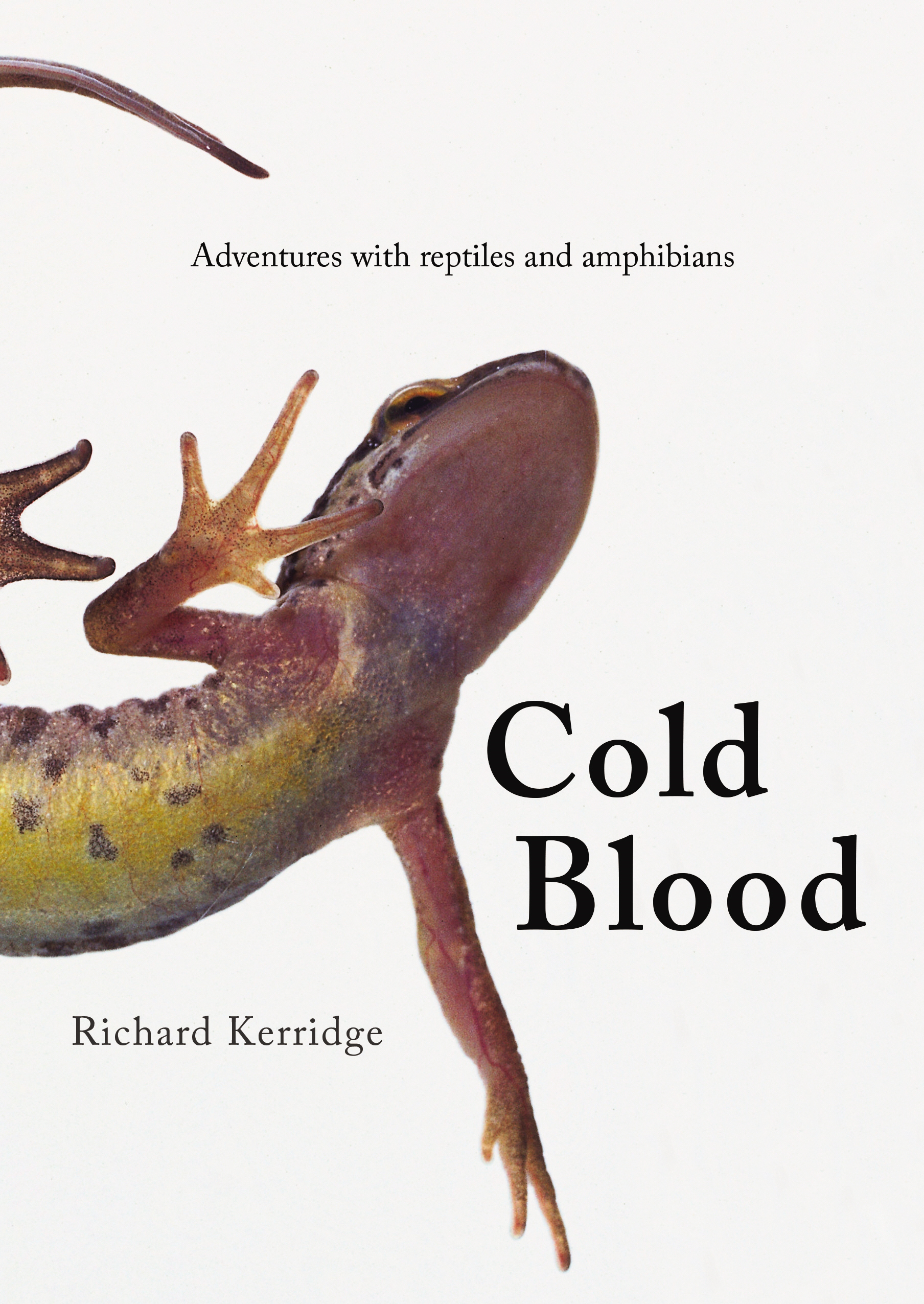Cold Blood Adventures with Reptiles and Amphibians