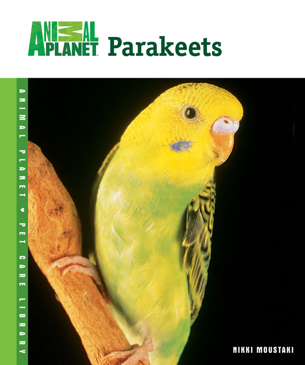 Parakeets By: Nikki Moustaki