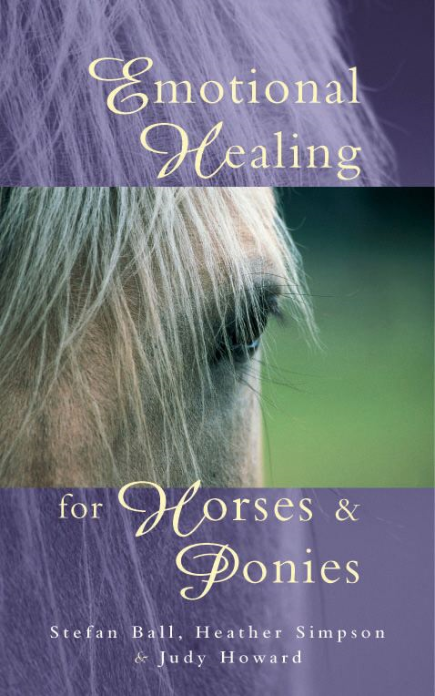 Emotional Healing For Horses & Ponies