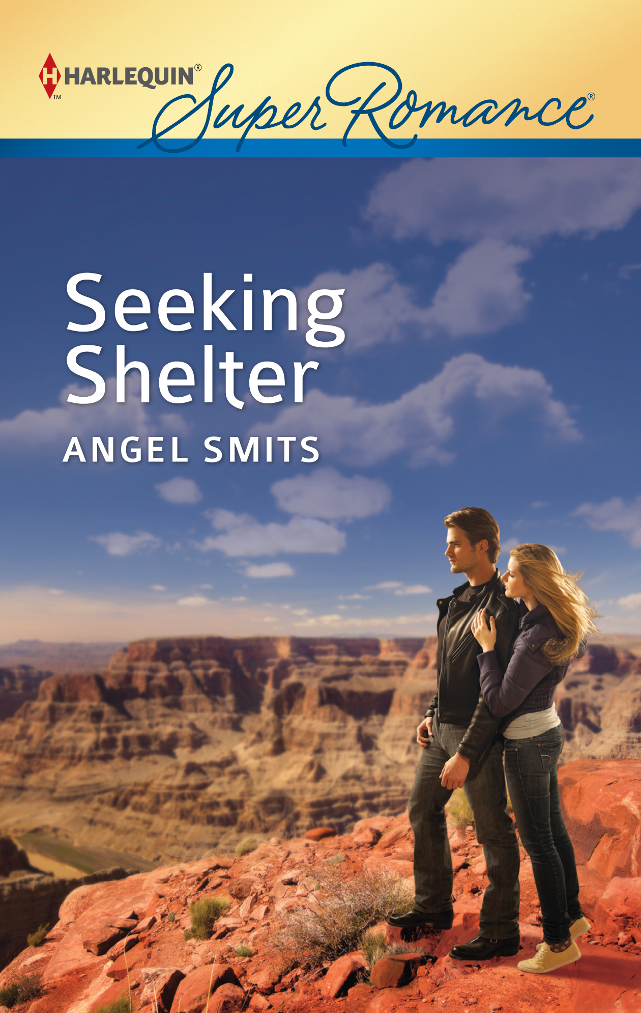 Seeking Shelter By: Angel Smits