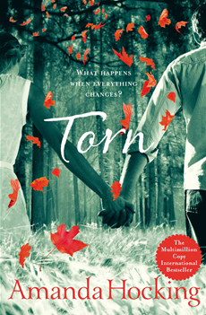 Torn: Book Two in the Trylle Trilogy Book Two in the Trylle Trilogy
