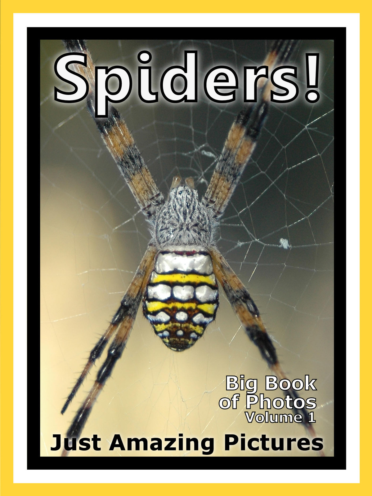 Just Spider Photos! Big Book of Photographs & Pictures of Spiders, Vol. 1
