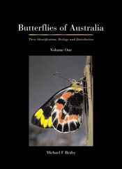 Butterflies of Australia: Their Identification,  Biology and Distribution