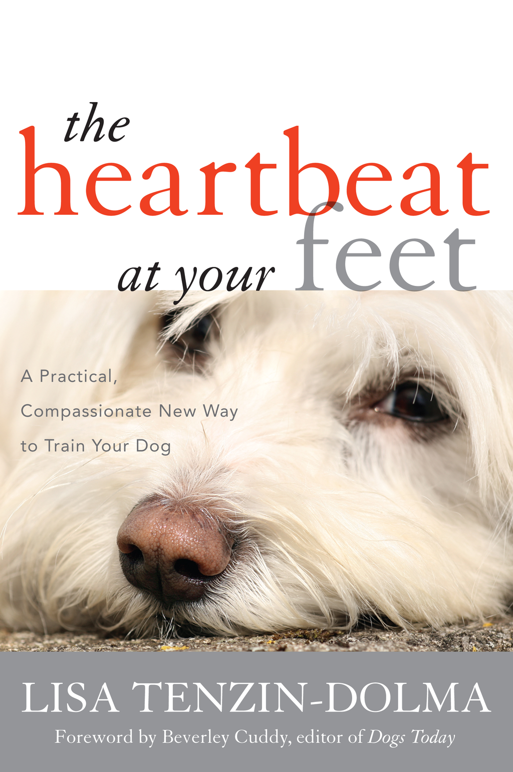 The Heartbeat at Your Feet: A Practical, Compassionate New Way to Train Your Dog