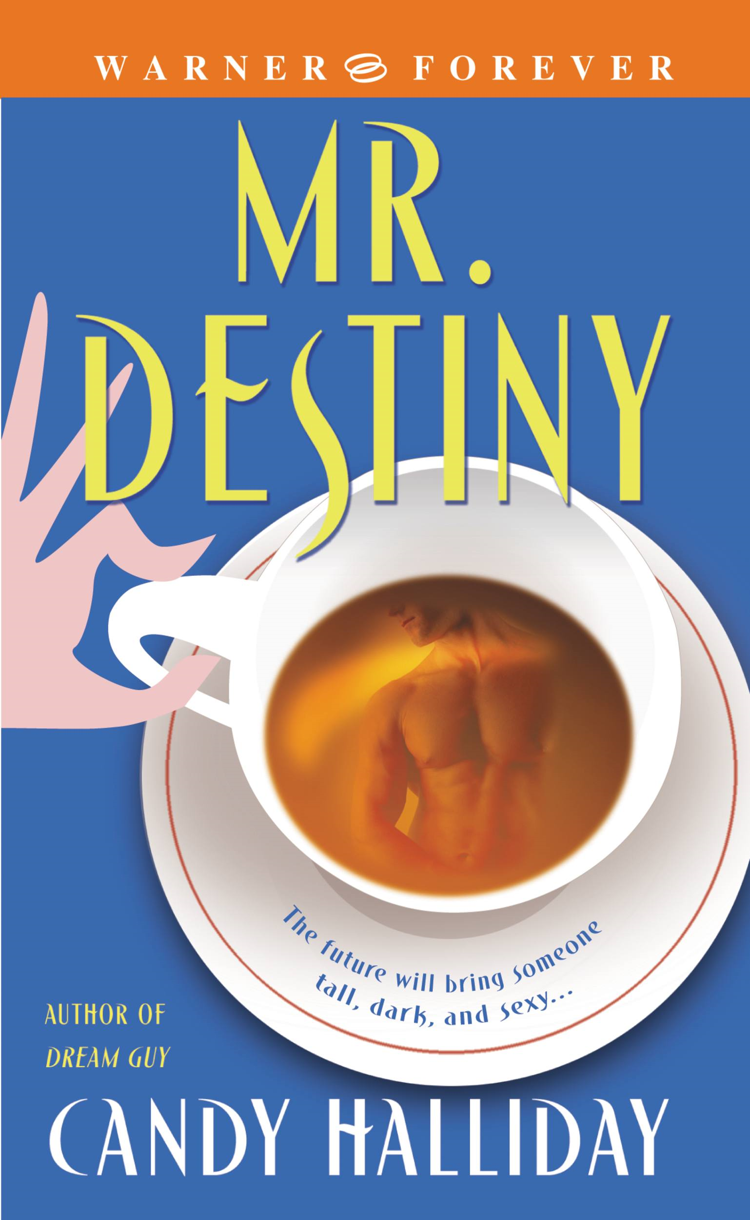 Mr. Destiny By: Candy Halliday