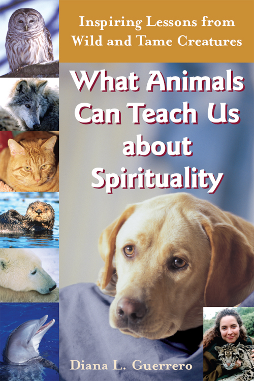 What Animals Can Teach Us about Spirituality: Inspiring Lessons from Wild and Tame Creatures