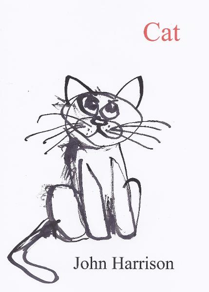Cat By: John Harrison