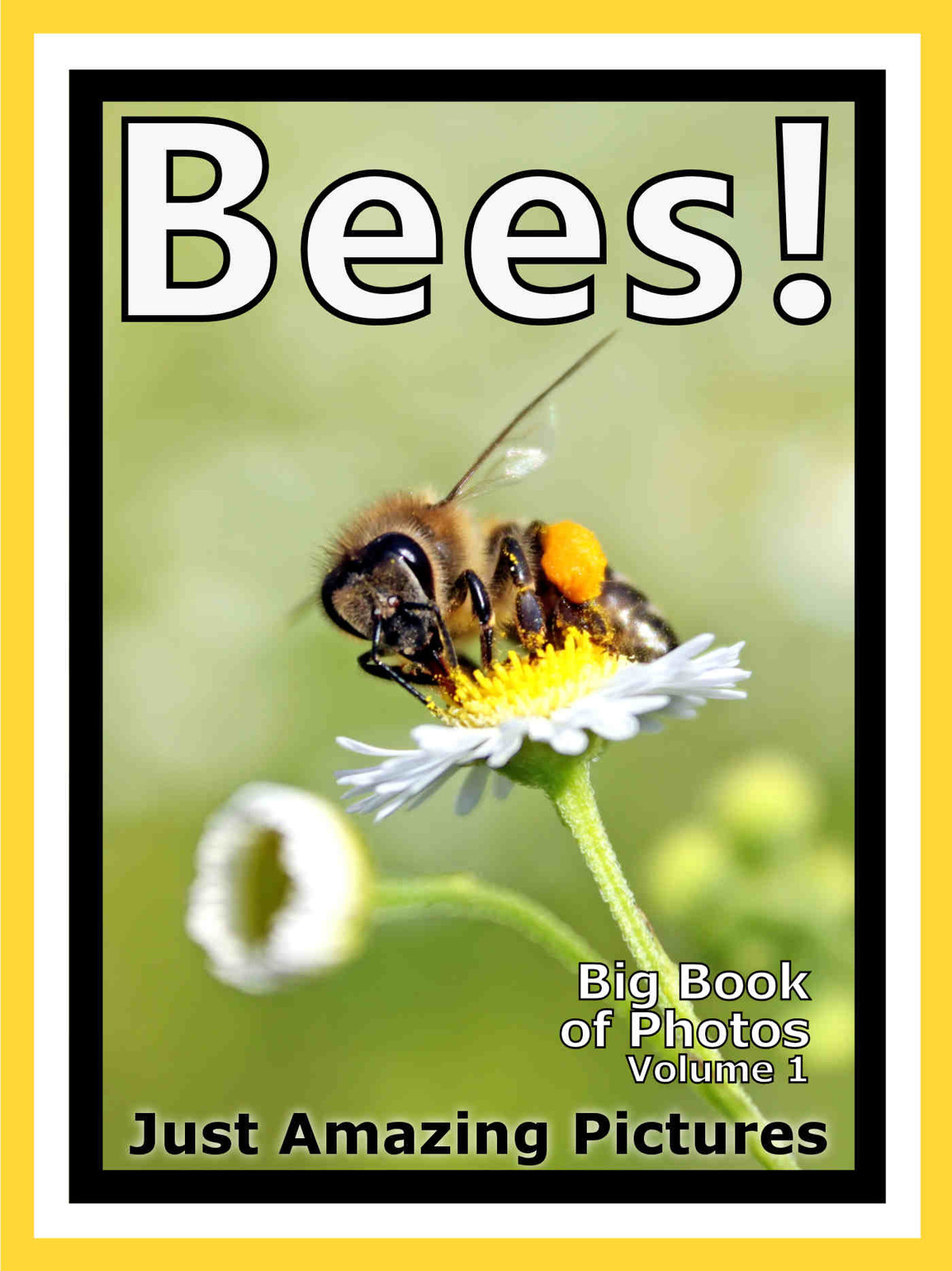 Just Bee Photos! Big Book of Photographs & Pictures of Bees, Vol. 1