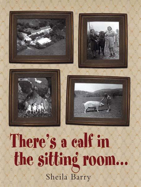 There's a calf in the sitting room.… By: Shelia Barry