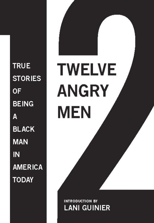 12 Angry Men By: Gregory S. Parks,Matthew W. Hughey