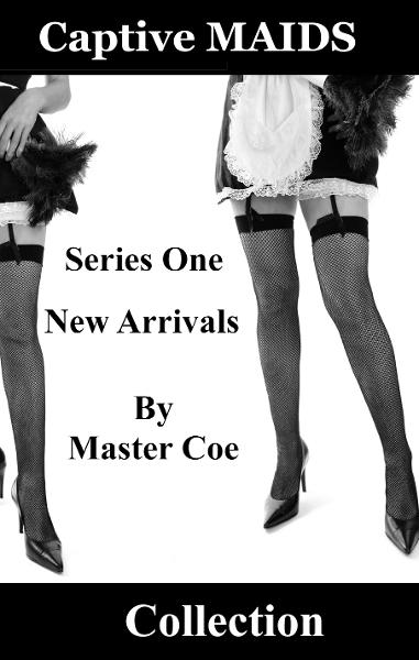 Captive Maids Collection: Series One: New Arrivals