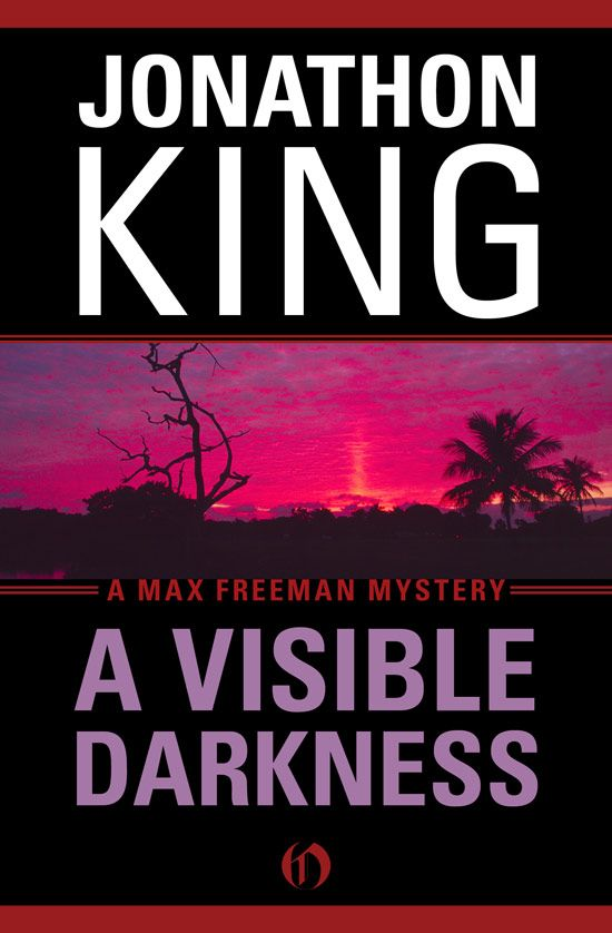 A Visible Darkness By: Jonathon King