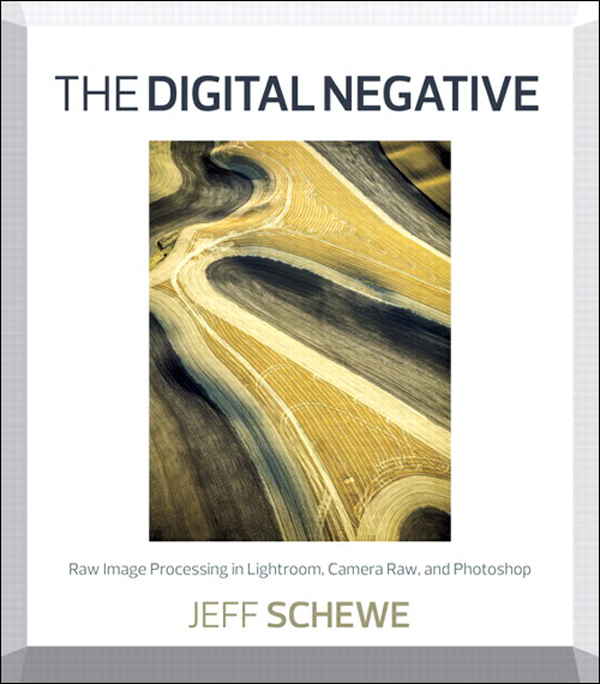 The Digital Negative: Raw Image Processing in Lightroom, Camera Raw, and Photoshop By: Jeff Schewe