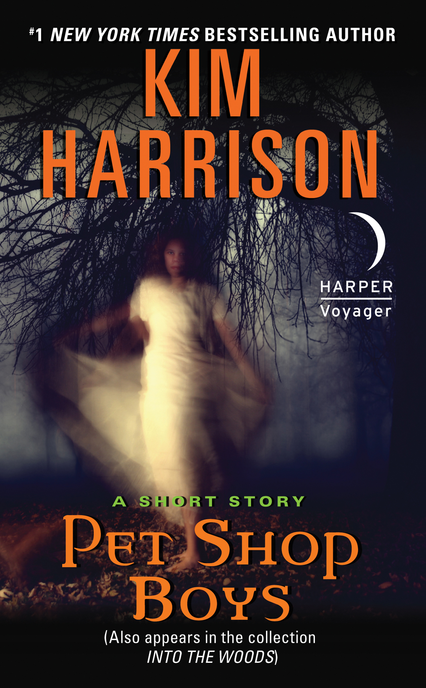 Pet Shop Boys: A Short Story By: Kim Harrison