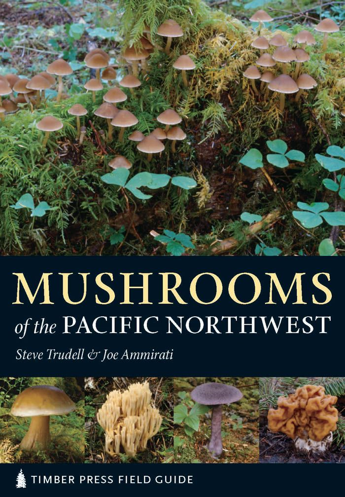 Mushrooms of the Pacific Northwest By: Joe Ammirati,Steve Trudell