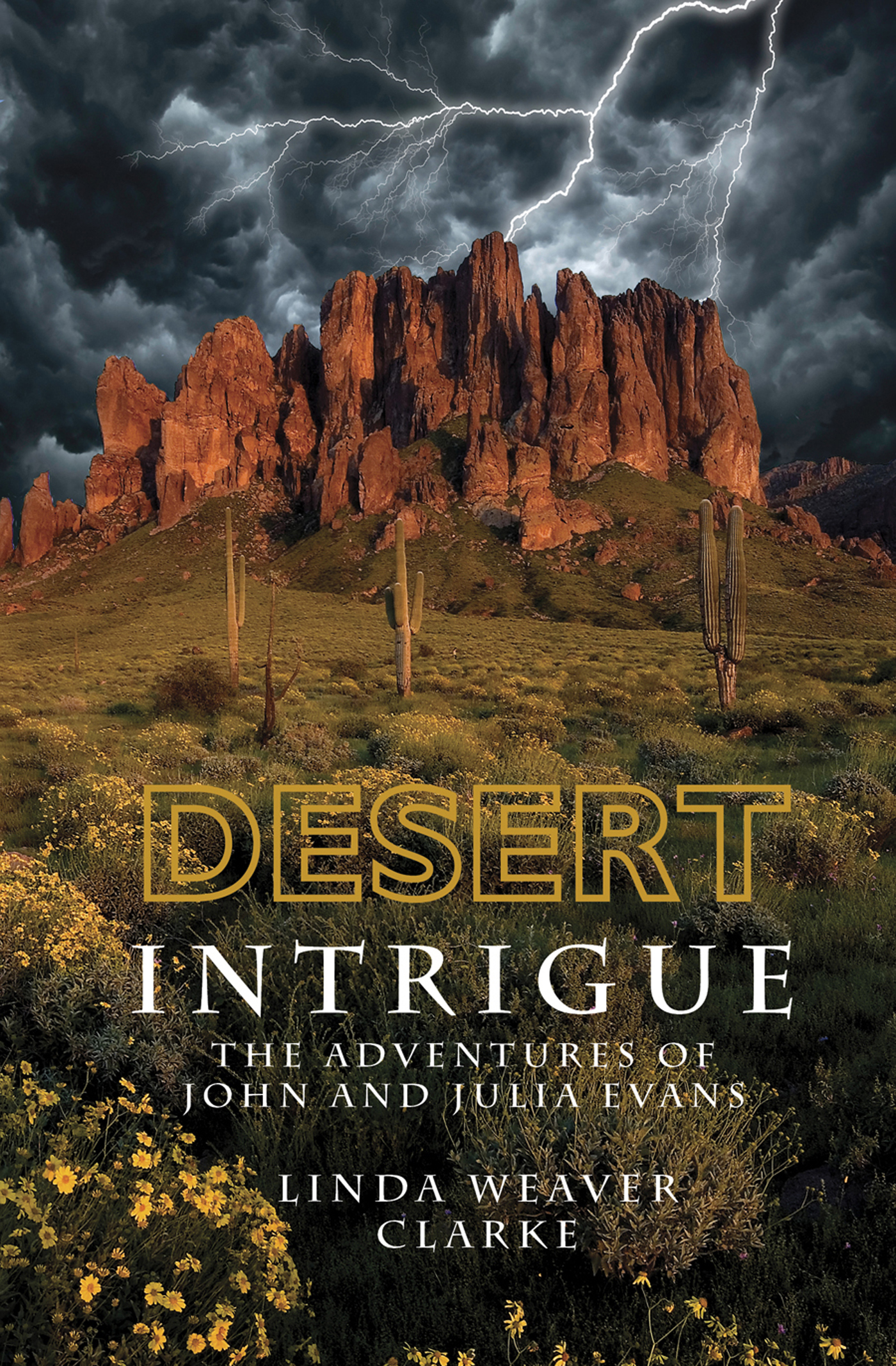 Desert Intrigue: The Adventures of John and Julia Evans