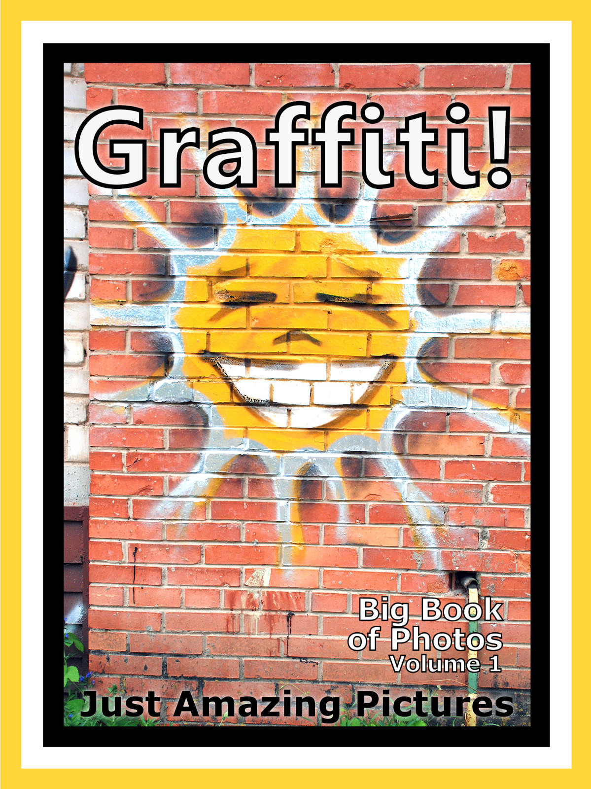 Just Graffiti Photos! Big Book of Photographs & Pictures of Graffiti Street Art, Vol. 1
