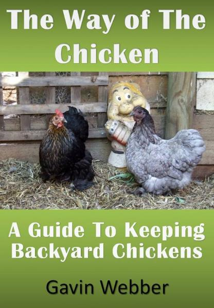 The Way Of The Chicken: A Guide To Keeping Backyard Chickens By: Gavin Webber