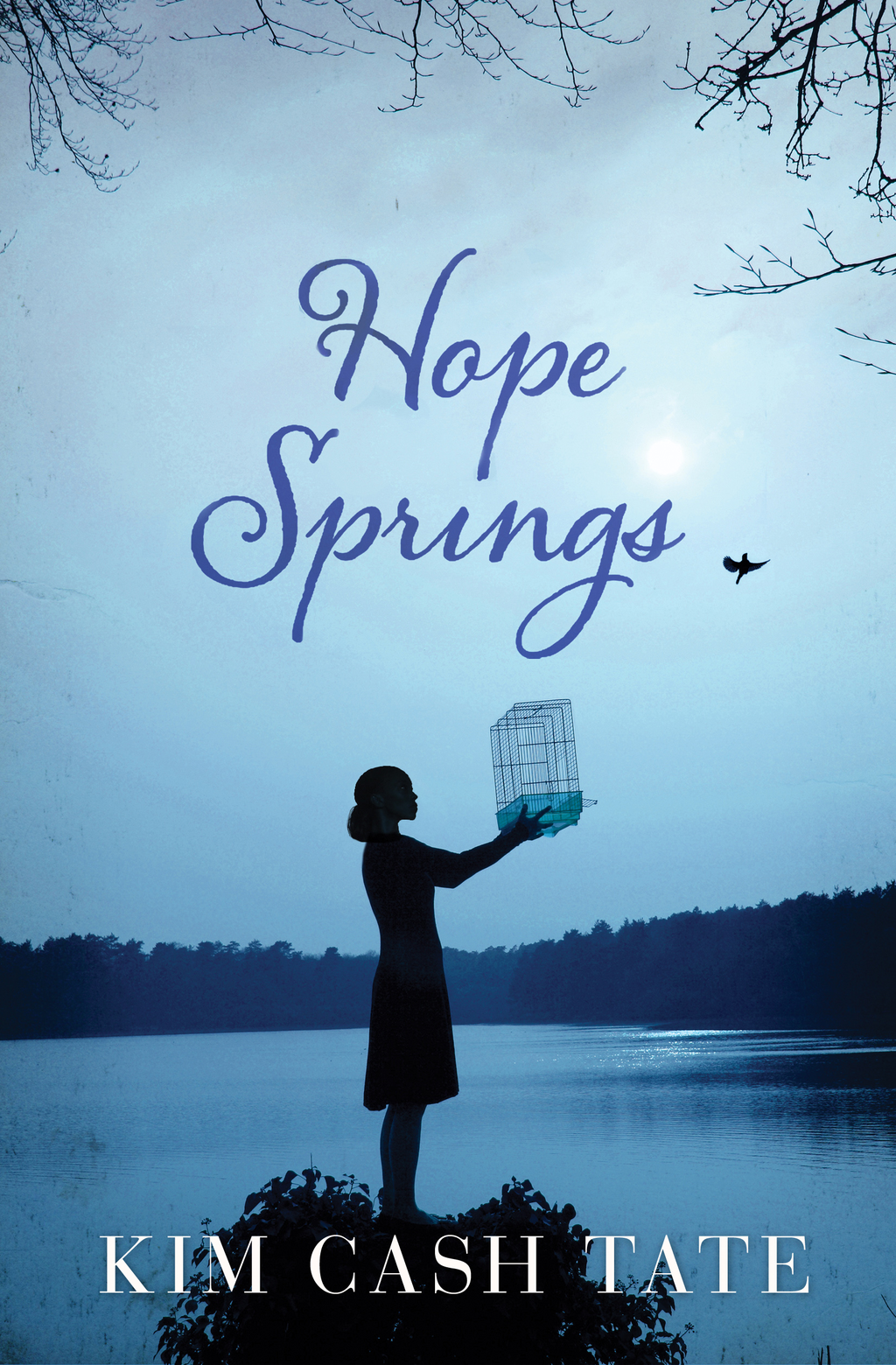 Hope Springs By: Kim Cash Tate
