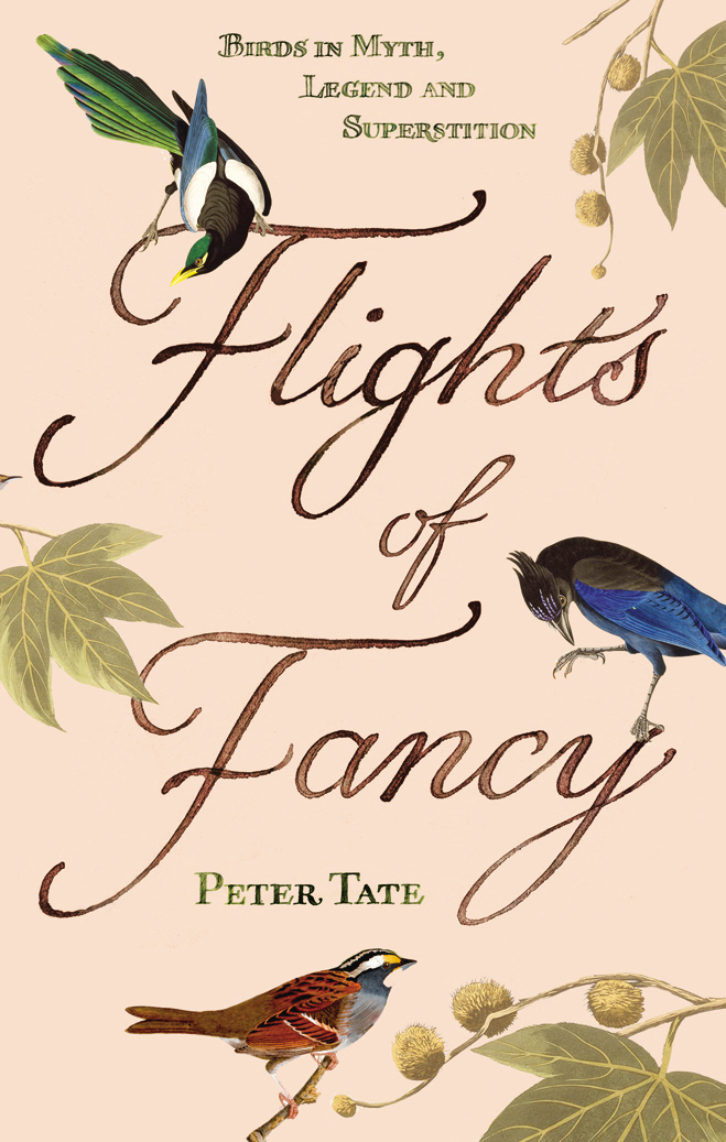 Flights of Fancy Birds in Myth,  Legend and Superstition