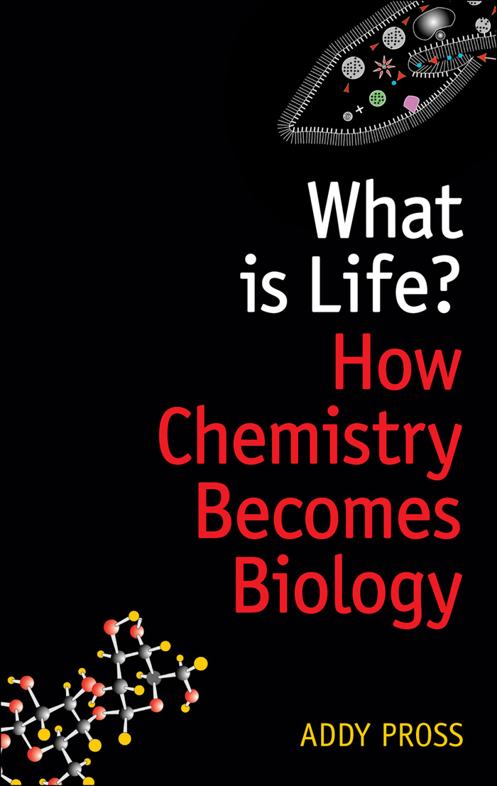 What is Life?:How chemistry becomes biology