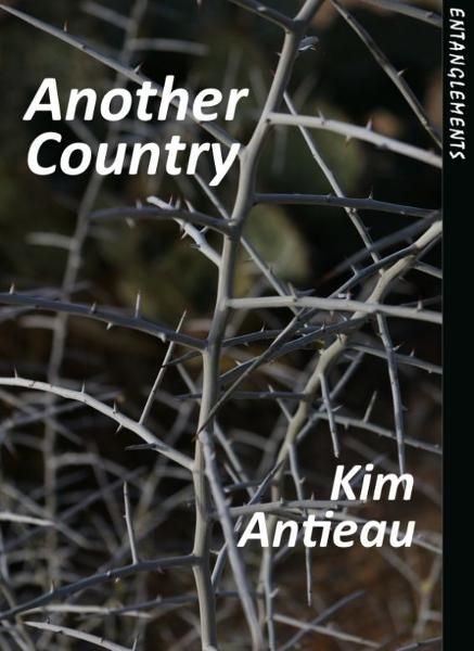 Another Country By: Kim Antieau