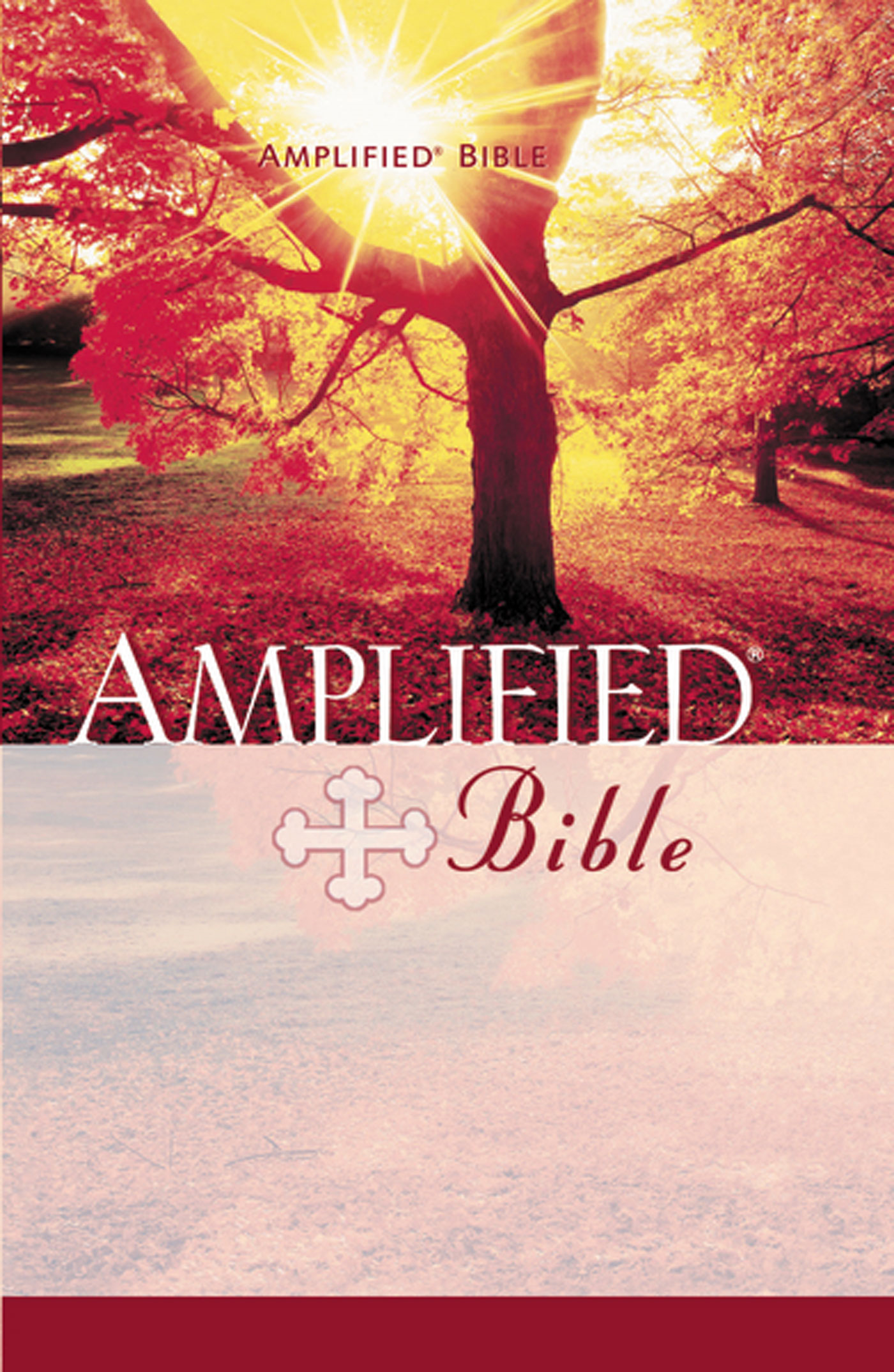 Amplified Bible By: Zondervan