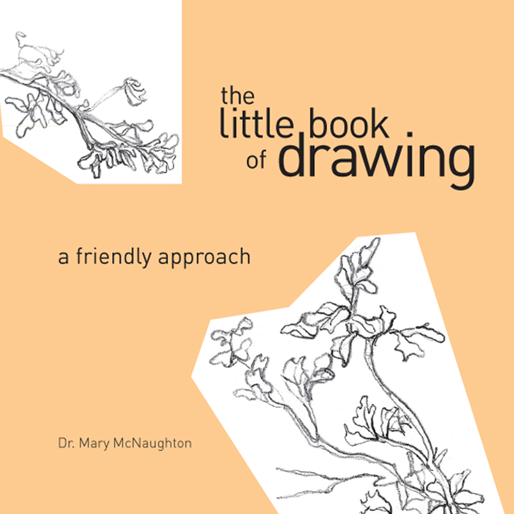 Little Book of Drawing: A Friendly Approach