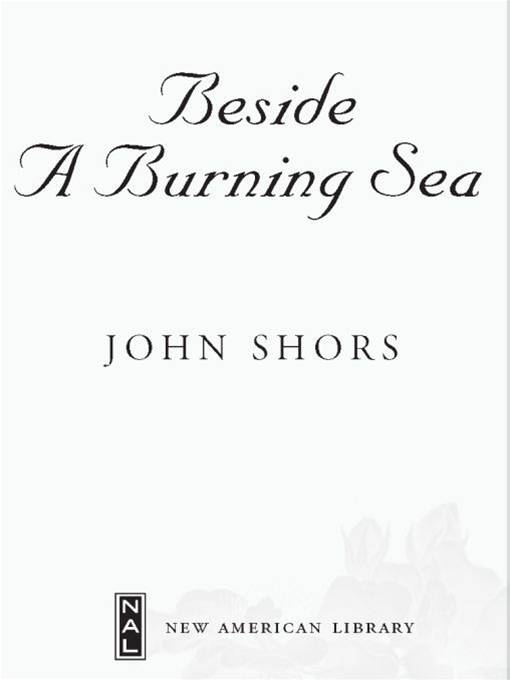 Beside a Burning Sea