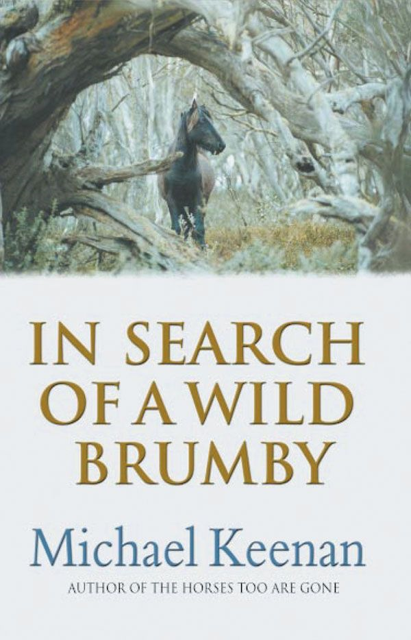 In Search Of A Wild Brumby By: Michael Keenan