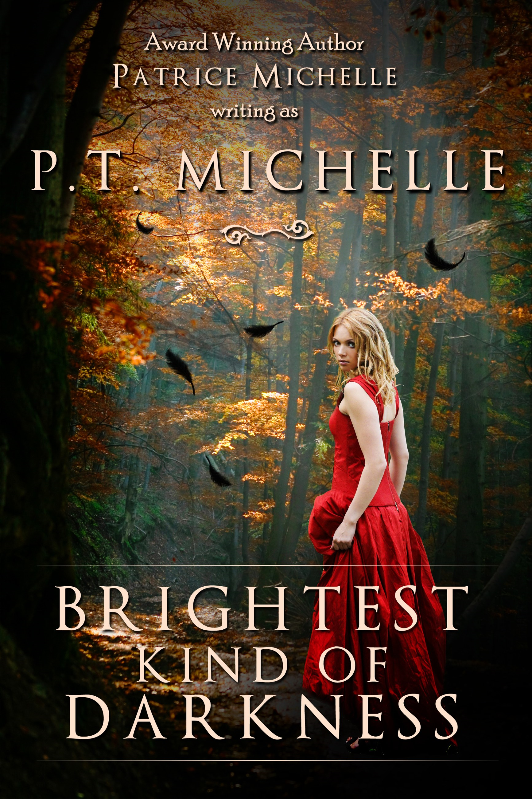 Brightest Kind of Darkness (Book 1)