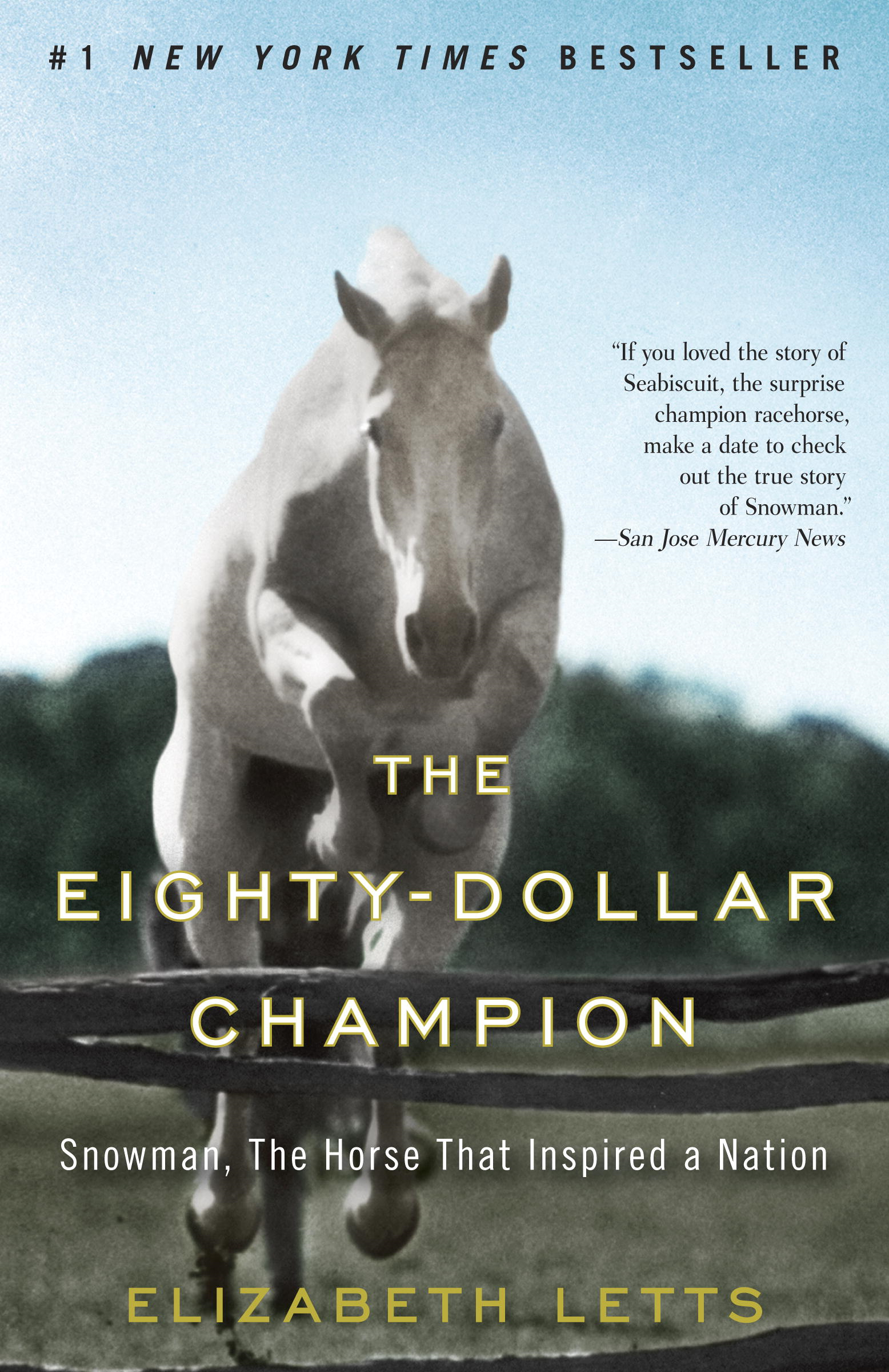 Book Cover: The Eighty-Dollar Champion