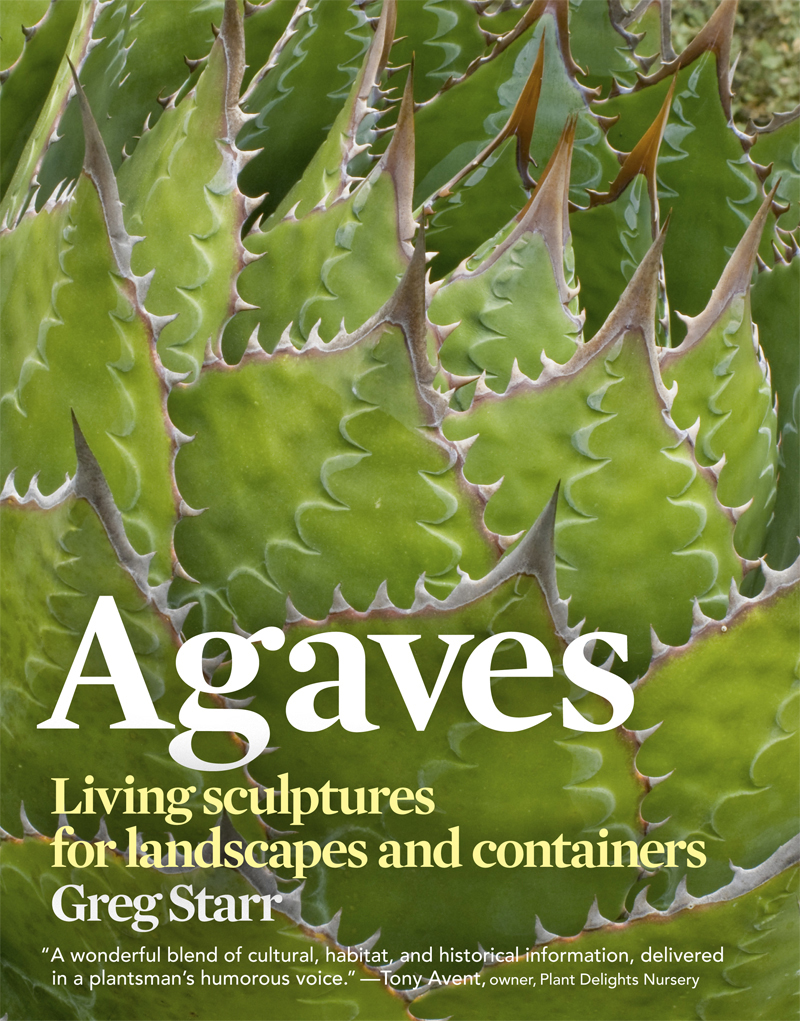 Book Cover: Agaves