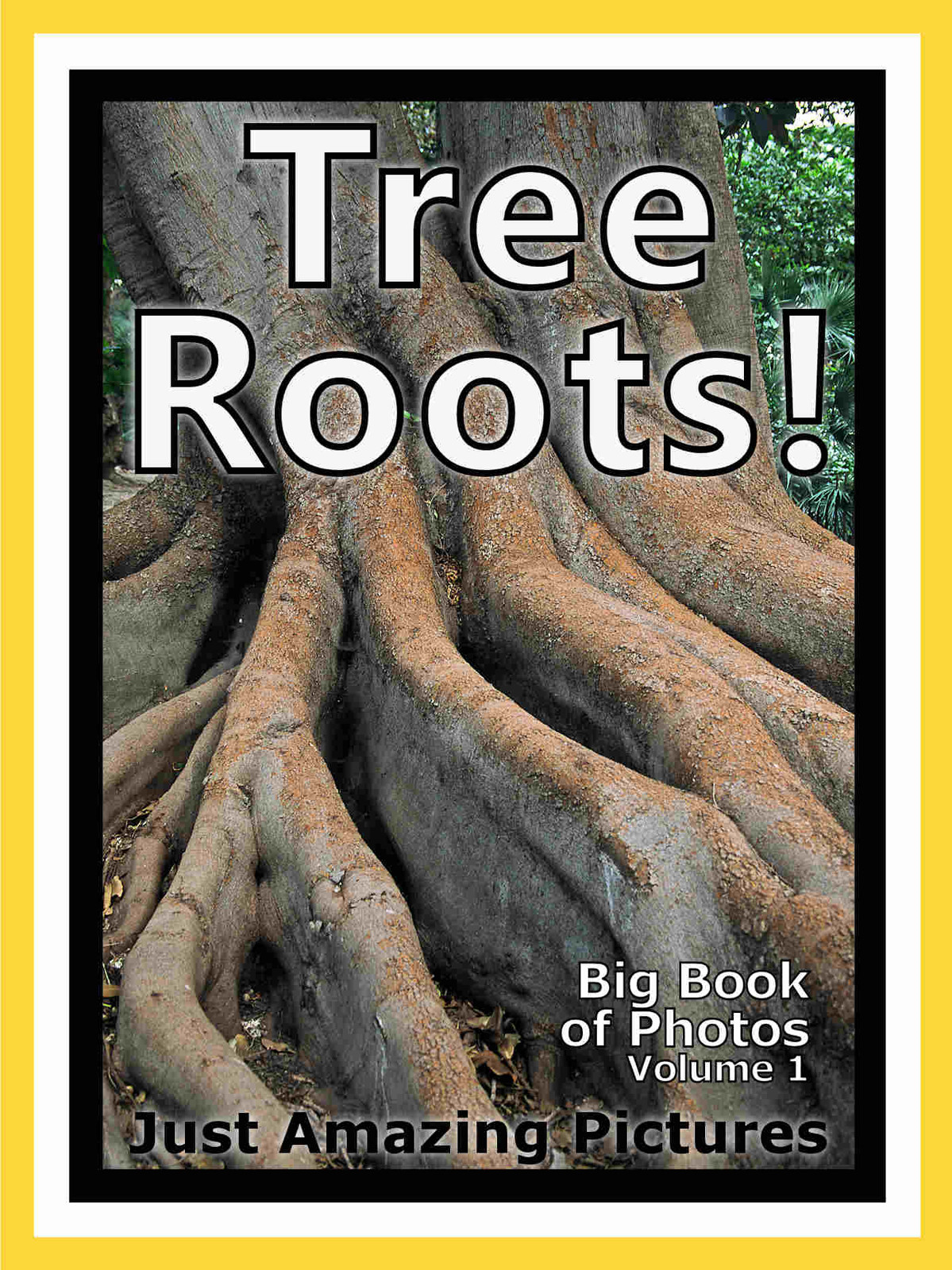 Just Tree Root Photos! Big Book of Photographs & Pictures of Tree Roots, Vol. 1