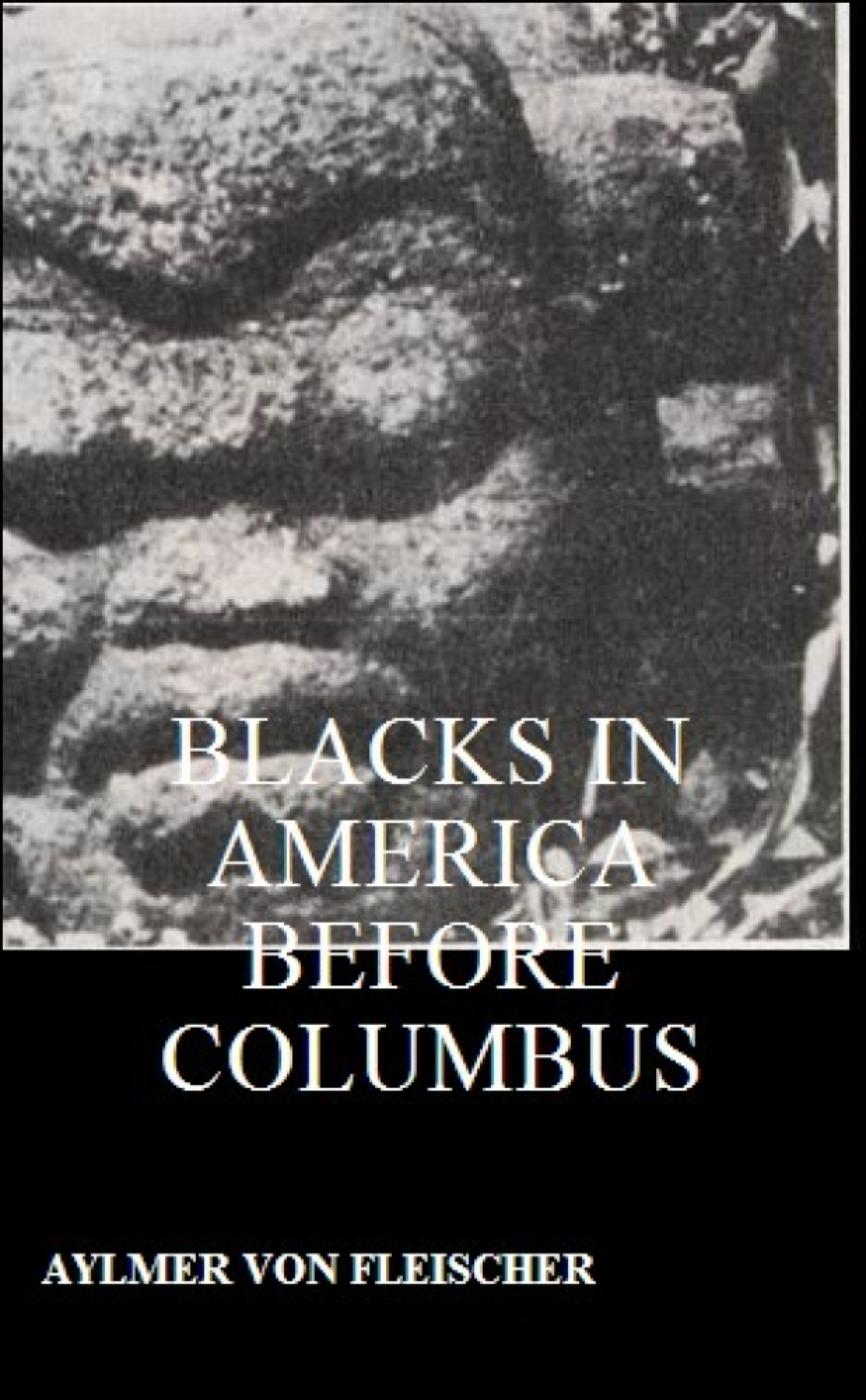 Blacks in America Before Columbus