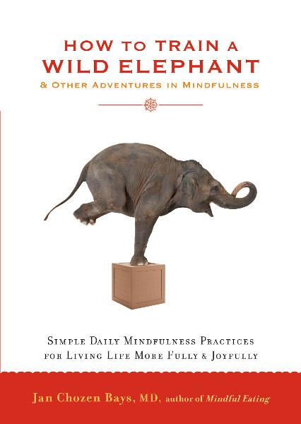 How to Train a Wild Elephant: And Other Adventures in Mindfulness By: Jan Chozen Bays, MD
