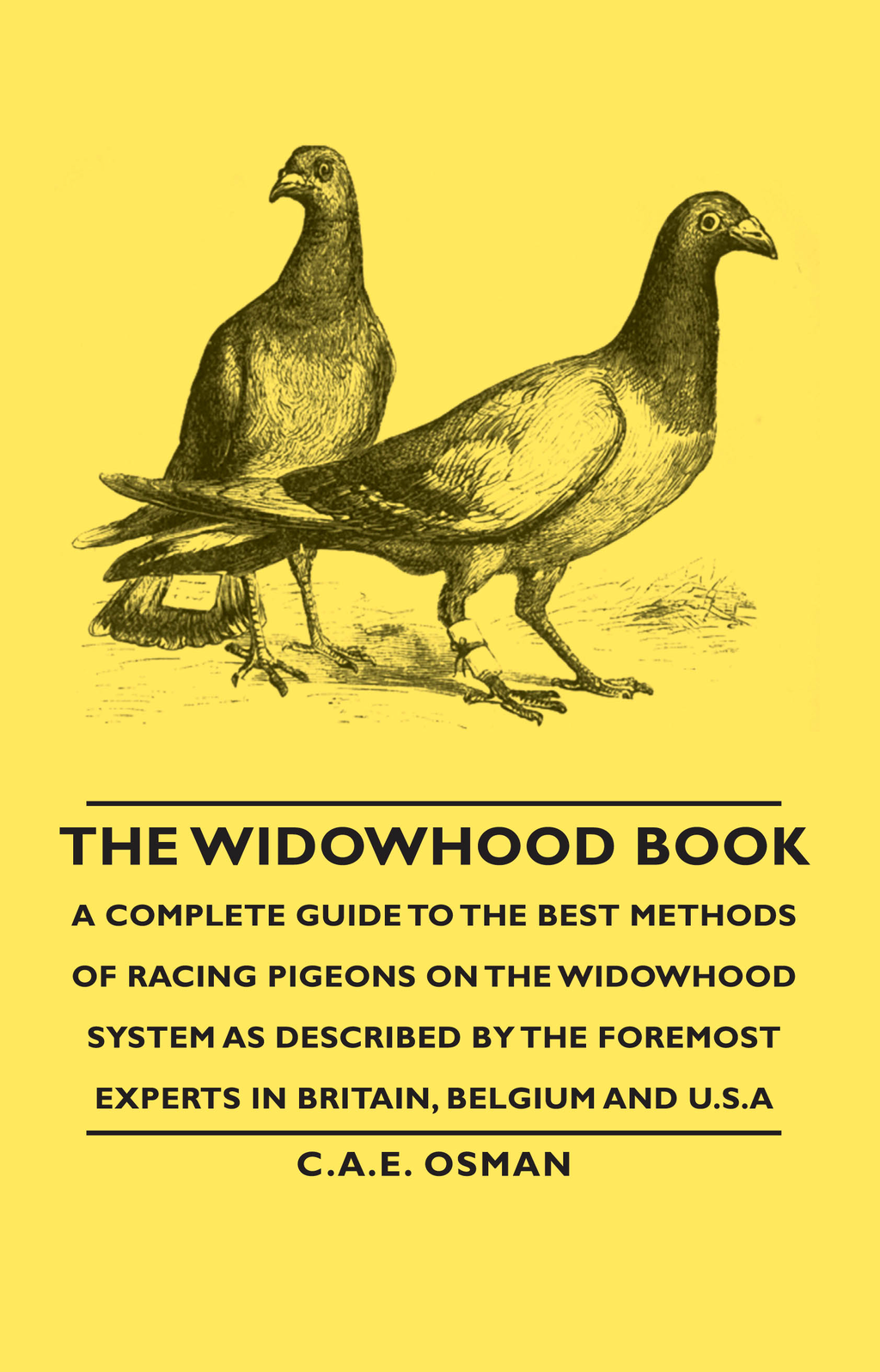 The Widowhood Book - A Complete Guide to the Best Methods of Racing Pigeons on the Widowhood System as Described by the Foremost Experts in Britain, Belgium and U.S.A By: C. A. Osman